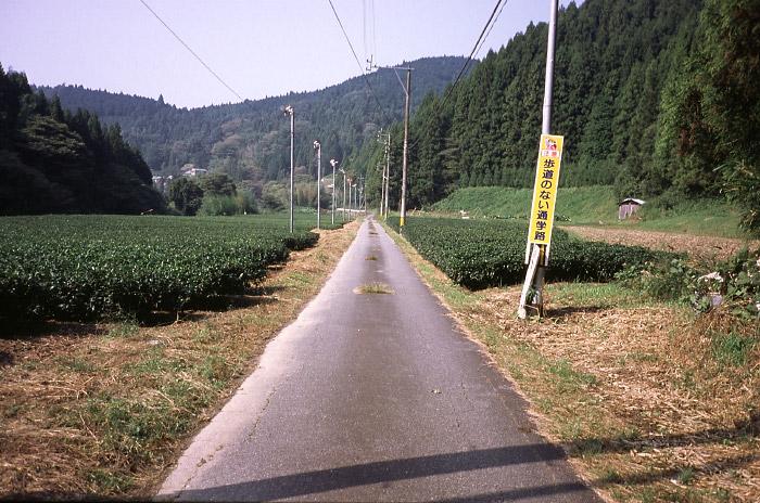 栃立付近の直線路