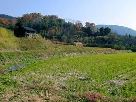 景行天皇陵付近の里山風景