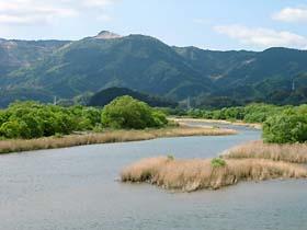 持井橋付近の那賀川