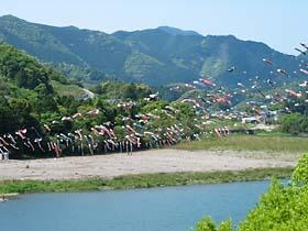 (左)加茂谷橋近くの鯉のぼり