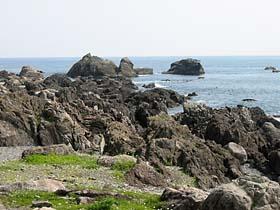 室戸岬の岩礁