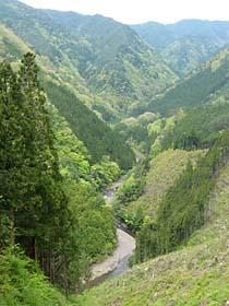 久木付近より御殿川を見下ろす