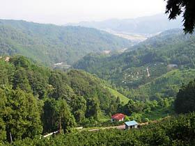 三坂ループ降り口より松山方面を見下ろす