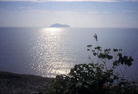 竹生島を望む