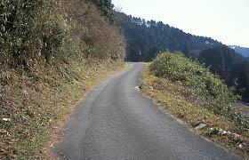 長滝付近の道