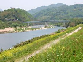 菜の花咲く木津川畔と恭仁大橋