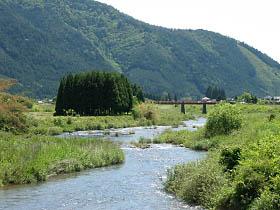 比賀江付近の桂川