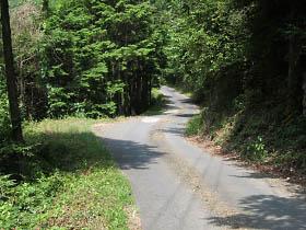 林道湯川線