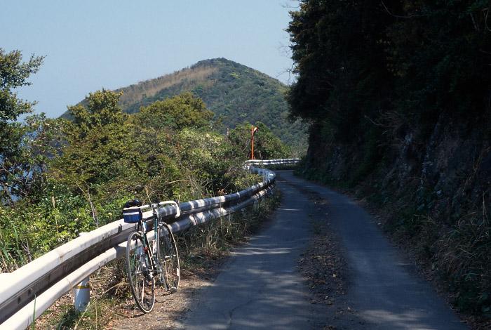 蒲生田付近の道