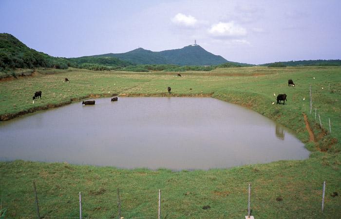 宇良部岳を望む池