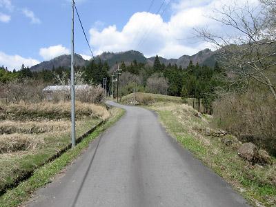 20060425_026.jpg