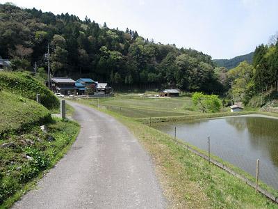 20060505_123.jpg