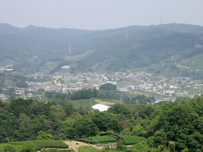 20060605_040.jpg