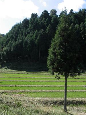 20061026_003.jpg